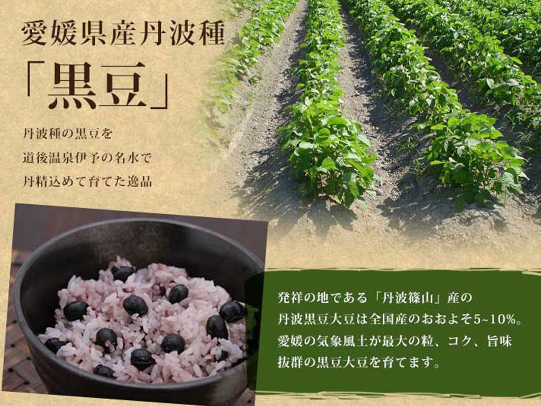 画像6:inaho×新宮かぶせ抹茶
